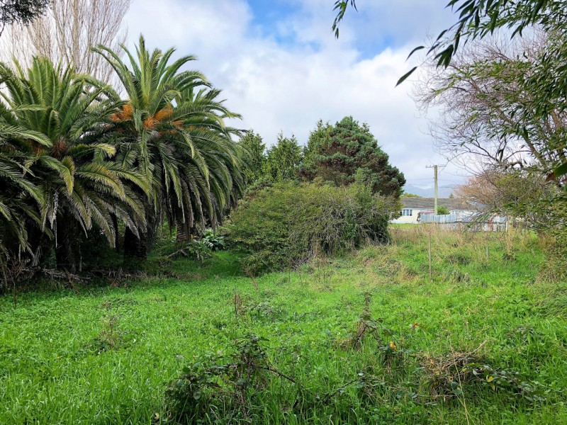 11 Grand Street, Shannon, Horowhenua - NZL (photo 4)