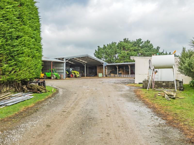 265 Waimutu Road, Marton, Rangitikei - NZL (photo 4)