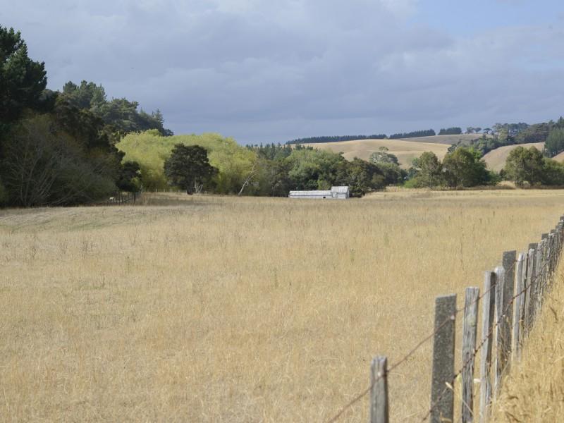 261 Dry River Road, Martinborough, South Wairarapa - NZL (photo 1)