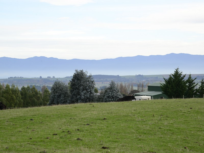 21 Southdown Drive, Martinborough, South Wairarapa - NZL (photo 4)