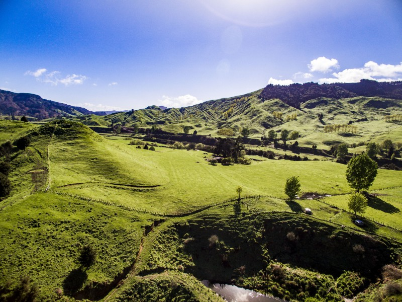 5166 State Highway 4, Taumarunui, Ruapehu - NZL (photo 2)