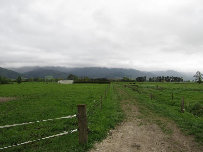 - Stanley Road South, Te Aroha, Matamata-piako - NZL (photo 1)
