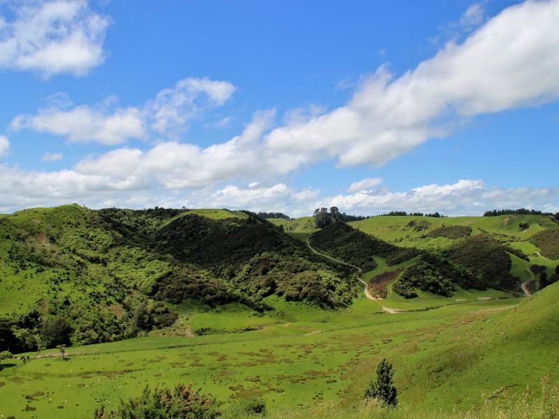 501 Denlair Road, Fordell, Wanganui - NZL (photo 1)