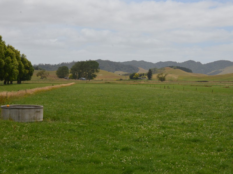466 Uapoto Road, Orini, Waikato - NZL (photo 1)