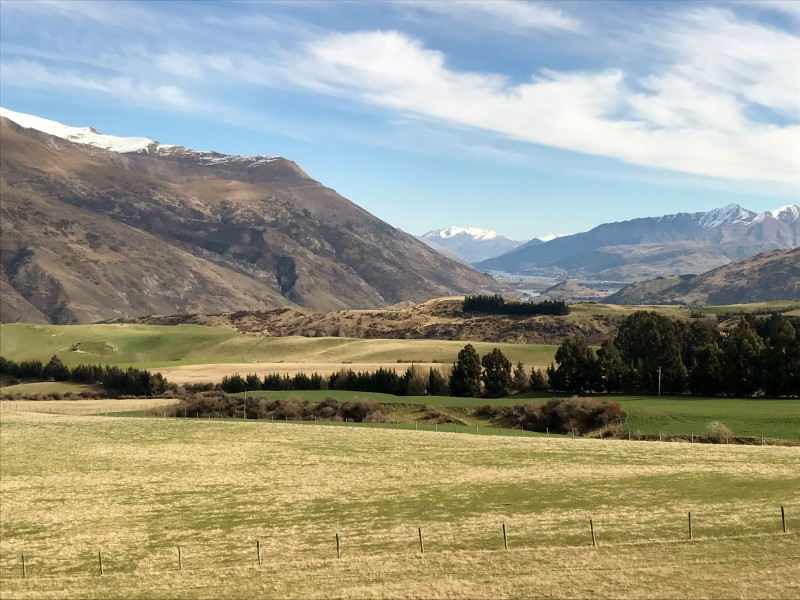 Featured Queenstown Real Estate 54